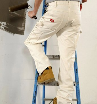 Home renovation professional up a ladder painting a wall